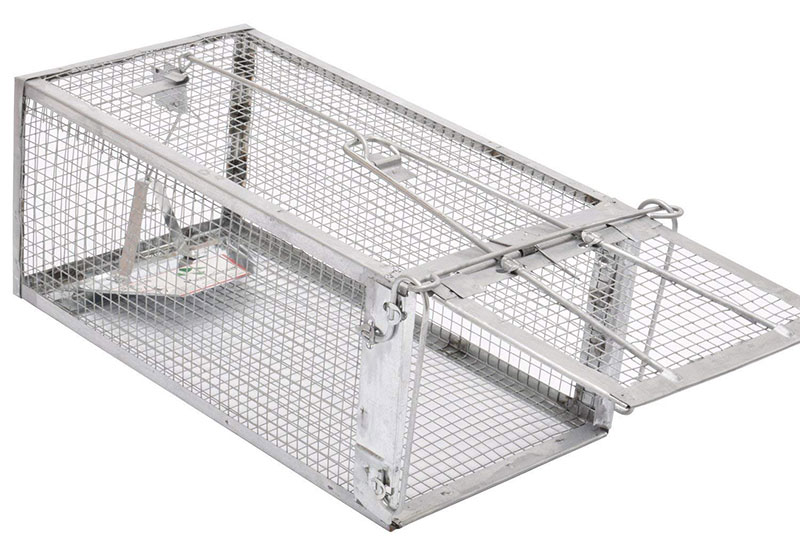 Kensizer Small Animal Cage Trap