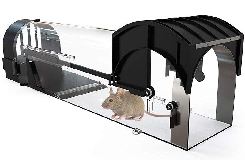 Avantina Mouse Mansion Trap